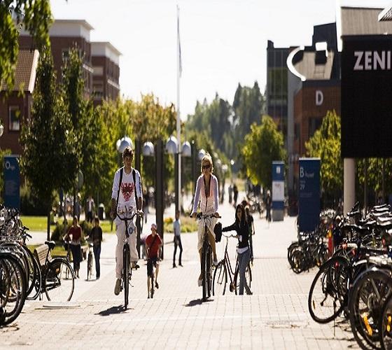 L'ONU met en avant les mérites du vélo, un moyen de transport abordable et écologique