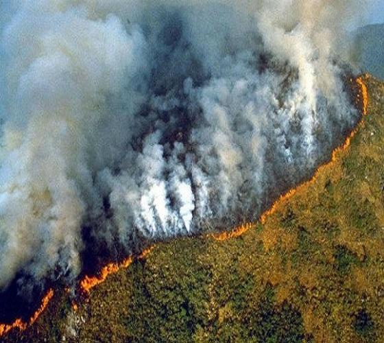 """حرائق الأمازون: إتفاق مجموعة السبع على مساعدة الدول المتضررة """"في أسرع وقت ممكن"""""""