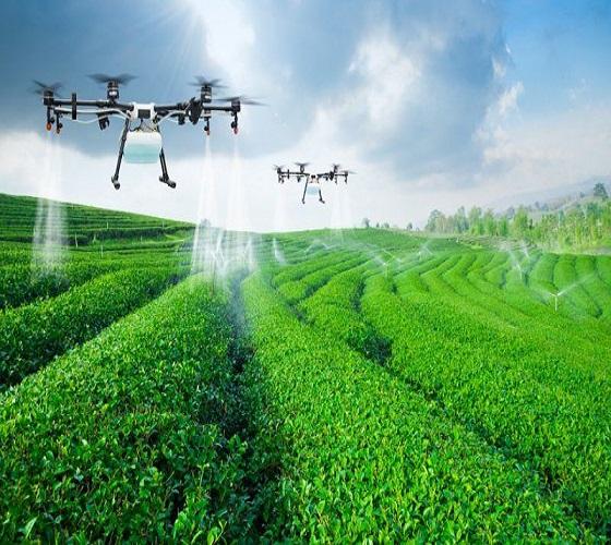 Forum international de l'agro-écologie : Promouvoir une agriculture durable