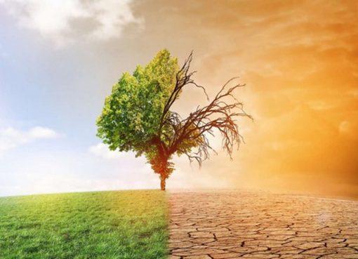 تغيرات مناخية: ورشة جهوية لتعزيز قدرات الدول الافريقية من 16 إلى 18 سبتمبر بالجزائر