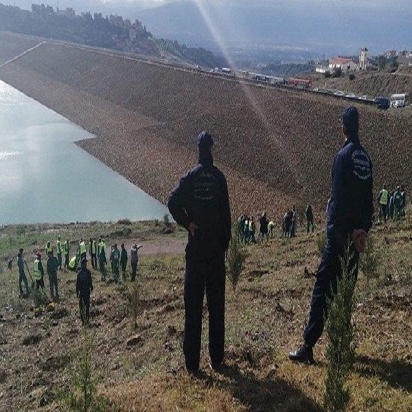 Alger: Une opération de reboisement lancée par l'ANBT au niveau du barrage de Douira