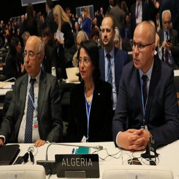 زرواطي تمثل الجزائر في أشغال قمة كوب 25 حول المناخ بإسبانيا