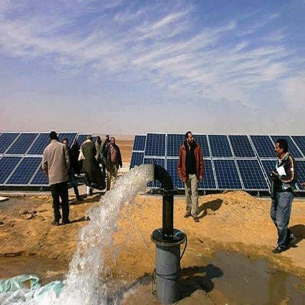 السقي بالتقطير باستخدام الطاقة الشمسية رهان مستقبلي للفلاحة بورقلة