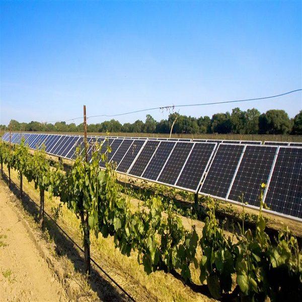 مشروع لتجهيز17 سوق جملة للخضر والفواكه بالطاقة الشمسية عبر التراب الوطني