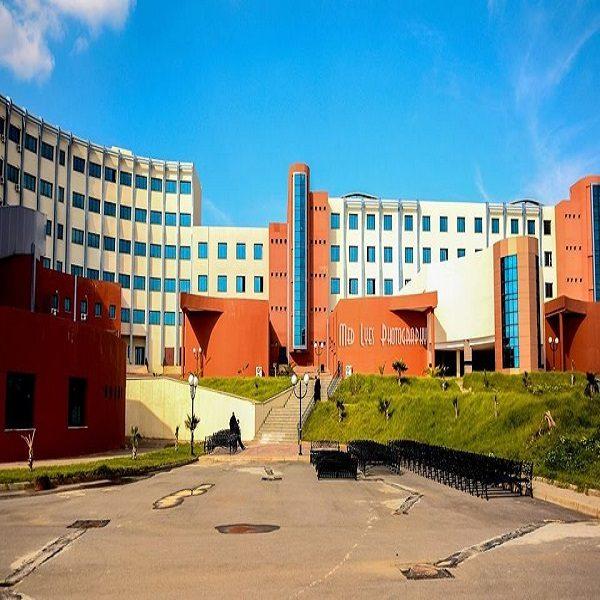 L'Ecole des hautes études commerciales de Koléa lance le projet de l'Ecole verte»