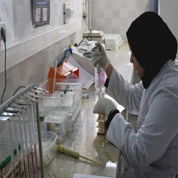 أوراغ يبرز أهمية النهوض بمجال البحث التطبيقي في الجزائر