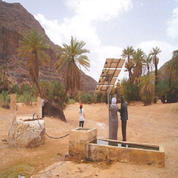 Missions techniques dans les parcs culturels de l'Ahaggar et du Tassili n'Ajjer : Le patrimoine écoculturel sous la loupe