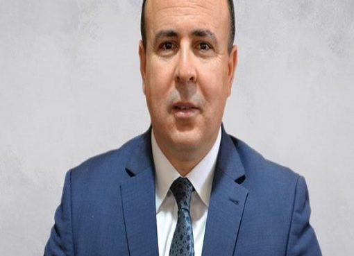 Énergies renouvelables : Une «priorité nationale», selon  le PDG de Sonelgaz