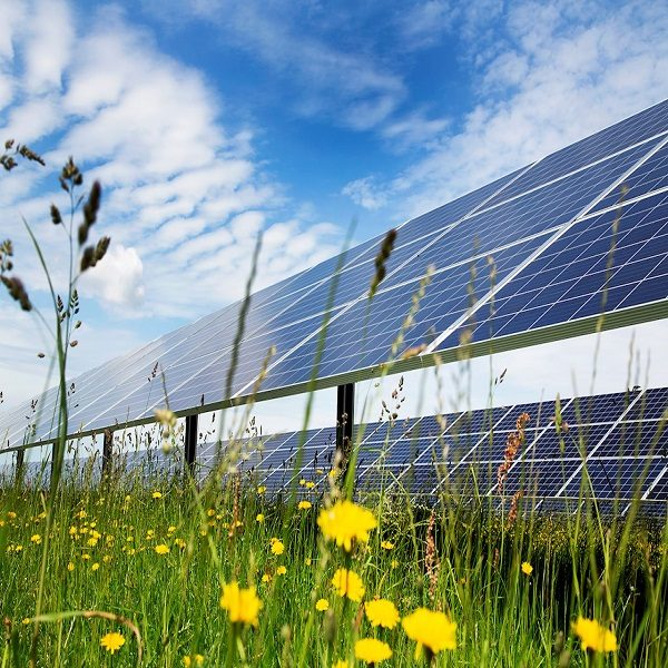 L'Algérie se lance dans un « méga projet » d'énergie solaire