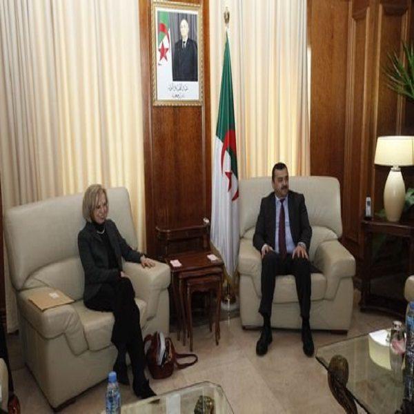 Energie: Arkab invite les entreprises allemandes à s'engager davantage en Algérie