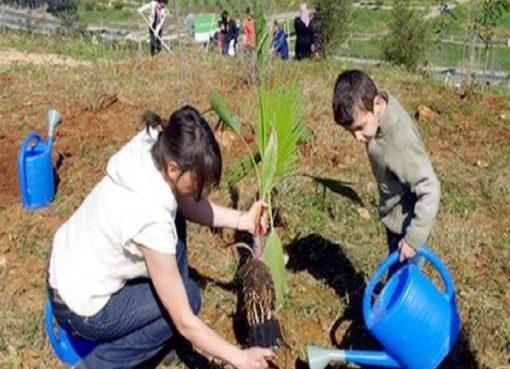 PNR: plantation de plus de 10 millions d'arbustes à fin février