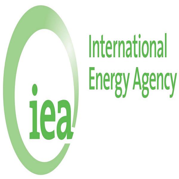 Energies renouvelables: l'AIE prévoit une baisse des nouvelles installation en 2020 en raison du Covid-19
