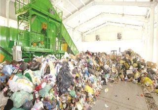 Alger: collecte de 130 t d'ordures à travers les forêts de détente