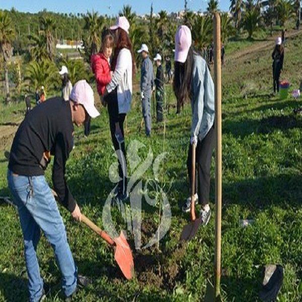 Journée mondiale de lutte contre la désertification : 11,5 millions d'arbres plantés depuis janvier