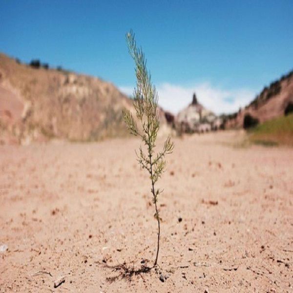 Environnement: plus de 2 milliards d'hectares dégradés par la sécheresse