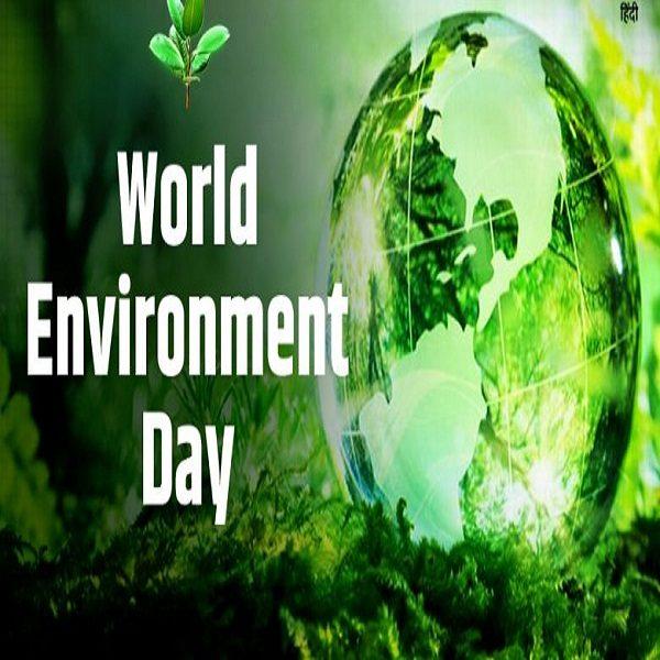 Journée mondiale de l'Environnement : Célébration sur les réseaux sociaux