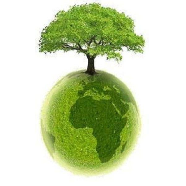 L'Algérie engagée à contribuer aux efforts internationaux pour protéger la couche d'ozone