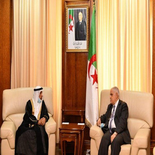 Algérie-EAU: la coopération bilatérale dans le domaine de l'énergie évoquée