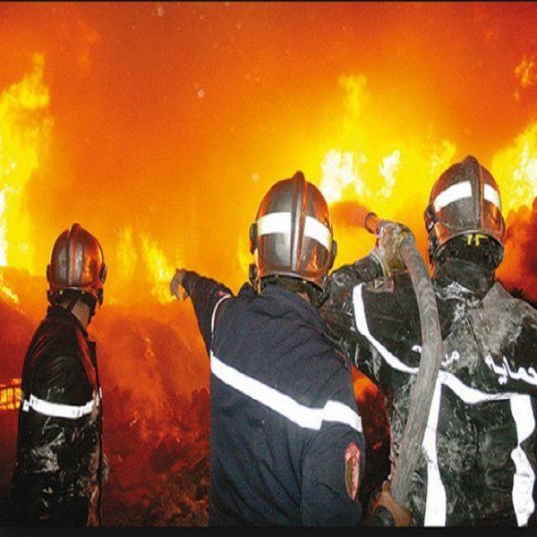 حرائق الغابات: الحماية المدنية تسخر إمكانيات معتبرة