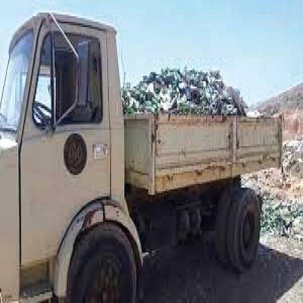 قسنطينة: جمع 47 طنا نفايات منزلية بغابـة البعراوية