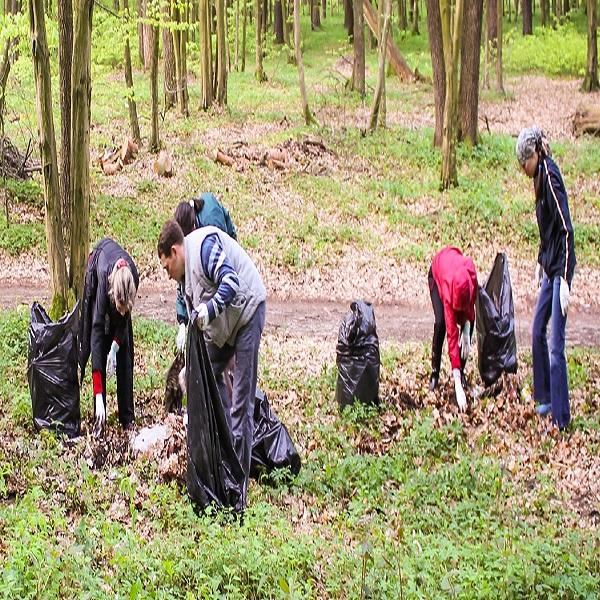 جمعية نشاطات شباب بوتليليس بوهران حملة تنظيم وتعقيم للمؤسسات التربيـة وغابـة «مسيلـــة»