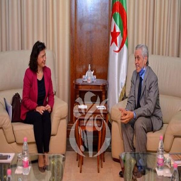 Transition énergétique: l'Algérie veut développer la coopération scientifique avec le PNUD