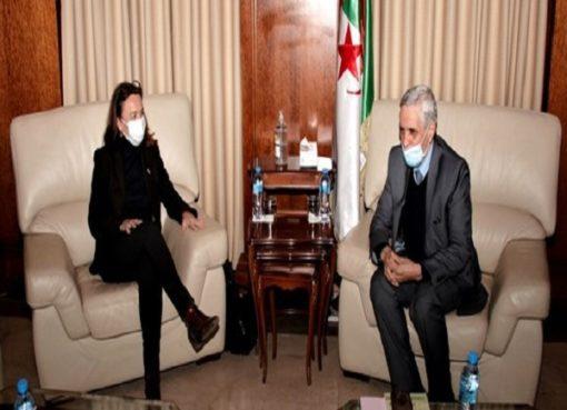 الانتقال الطاقوي : شيتور يتباحث مع سفيرة الدنمارك أفاق تعزيز التعاون الثنائي
