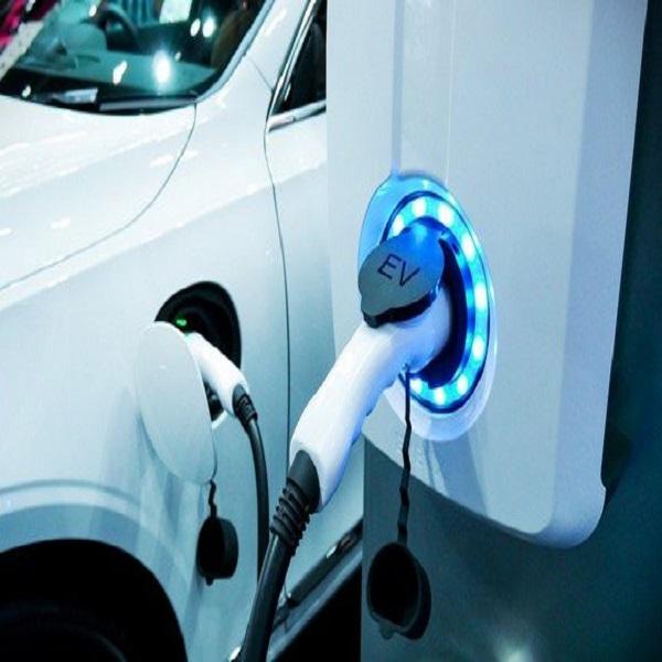 L'Algérie doit se préparer à la «révolution» des voitures électriques