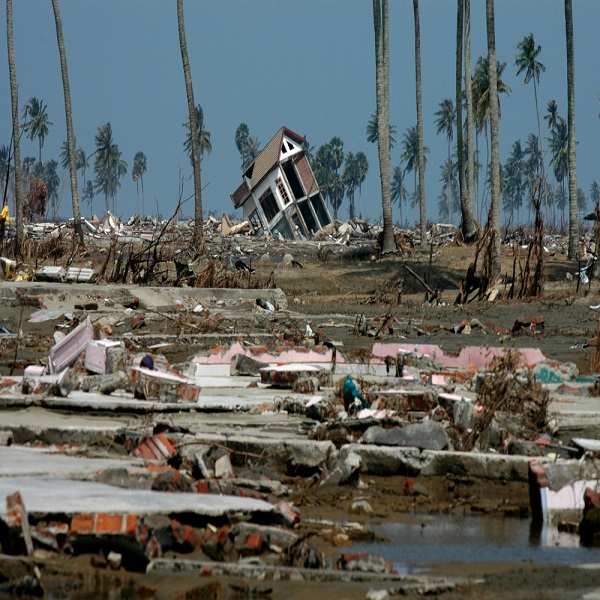 Changement climatique: l'Algérie prépare un livre blanc sur les catastrophes naturelles