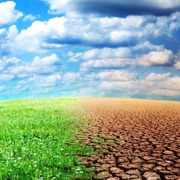 Climat: l'Algérie appelée à développer une stratégie adéquate