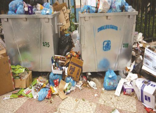 Réduction des déchets ménagers : Des défaillances et des manquements