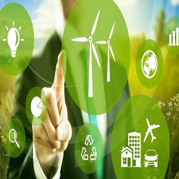 Formation pour les jeunes entrepreneurs «verts»