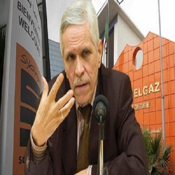 Sonelgaz fait le pari de l'électricité verte :Elaboration d'un nouveau plan stratégique : «Sonelgaz 2035»