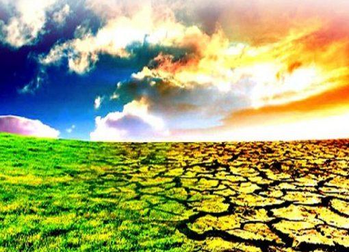 احتضنته قالمة لقاء لتعزيز الحوكمة المناخية المحلية